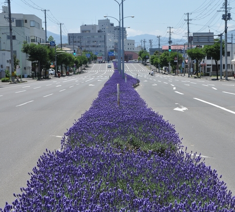 都市計画>青森県の都市計画